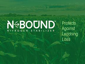 NBound-field