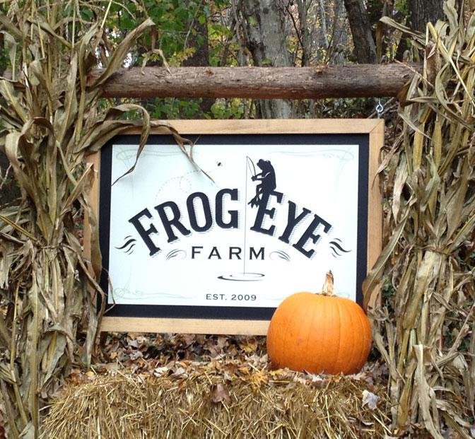 Display-FrogEye-sign
